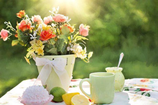 Buổi sáng và hoa thật đẹp
